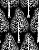 Silueta del árbol del vector Imagen de archivo