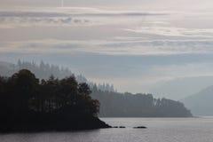 Silueta del árbol por el lago imagenes de archivo
