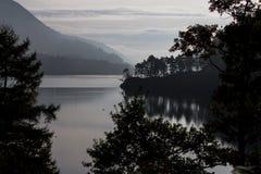 Silueta del árbol por el lago fotos de archivo libres de regalías