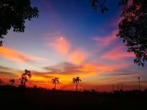 Silueta del árbol y de la puesta del sol anaranjados claros - en el paisaje hermoso del cielo en la naturaleza Fotografía de archivo