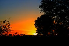 Silueta del árbol y de la rama en la puesta del sol amarillo-naranja en paisaje hermoso del cielo en la naturaleza Fotografía de archivo libre de regalías