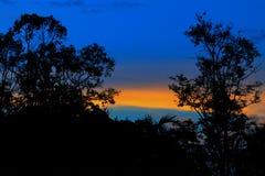 Silueta del árbol y de la rama en la puesta del sol en imagen hermosa del paisaje del cielo en la naturaleza Imagenes de archivo