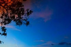 Silueta del árbol y de la rama en la puesta del sol en imagen hermosa del paisaje del cielo en la naturaleza Fotos de archivo