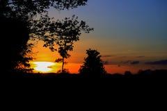 silueta del árbol y de la rama en la puesta del sol en imagen hermosa del paisaje del cielo en la naturaleza: con el espacio de l Imagen de archivo