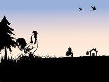 Silueta del árbol y del gallo Fotografía de archivo