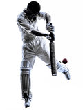 Silueta del bateador del jugador del grillo Imagenes de archivo