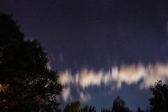 Silueta del bosque en el cielo nocturno Fotos de archivo