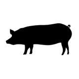 Silueta del cerdo Fotos de archivo