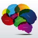 Silueta del cerebro humano con palabras del negocio Imagen de archivo libre de regalías