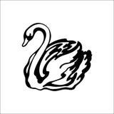 Silueta del cisne Fotografía de archivo