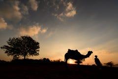 Silueta del comerciante del camello que cruza la duna de arena durante puesta del sol Foto de archivo