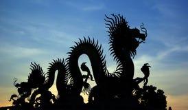 Silueta del dragón chino de oro Imagenes de archivo