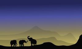 Silueta del elefante en desierto Imágenes de archivo libres de regalías