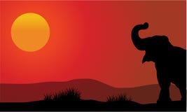 Silueta del elefante en la puesta del sol con el sol Fotos de archivo libres de regalías