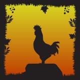 Silueta del gallo en la puesta del sol Imagenes de archivo