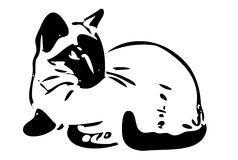 Silueta del gato negro Imagenes de archivo