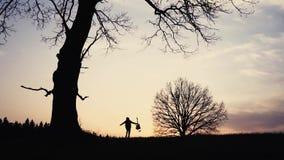 Silueta del guitarrista en la cámara lenta de la puesta del sol funcionamientos con una guitarra en sus manos almacen de video