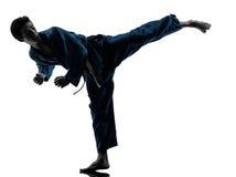 Silueta del hombre de los artes marciales del vietvodao del karate Imagenes de archivo