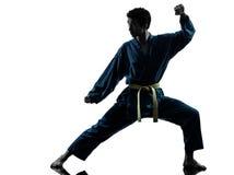 Silueta del hombre de los artes marciales del vietvodao del karate Imágenes de archivo libres de regalías