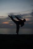Silueta del hombre de los artes marciales que entrena al Taekwondo Fotografía de archivo libre de regalías