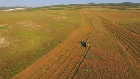 Silueta del hombre de negocios Cowering Campos de la cosecha almacen de metraje de vídeo