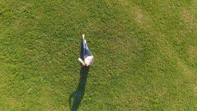 Silueta del hombre de negocios Cowering Chica joven que miente y que descansa sobre césped el día soleado en parque en hierba Sob almacen de video