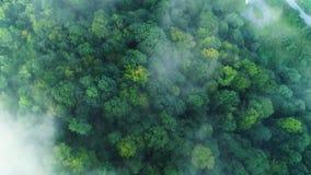 Silueta del hombre de negocios Cowering El volar sobre las altas montañas en nubes hermosas almacen de metraje de vídeo