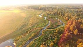 Silueta del hombre de negocios Cowering El volar sobre el río hermoso y el bosque hermoso almacen de metraje de vídeo
