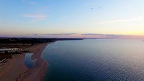 Silueta del hombre de negocios Cowering Varios p?jaros que vuelan sobre la playa en la puesta del sol metrajes