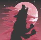 Silueta del hombre lobo que grita en la luna Foto de archivo libre de regalías