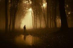 Silueta del hombre que se coloca cerca de una charca en un bosque espeluznante oscuro con niebla en otoño