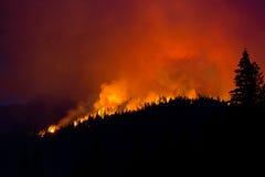Silueta del incendio fuera de control Fotografía de archivo
