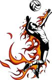 Silueta del jugador de voleibol con las llamas Ilustración del vector libre illustration