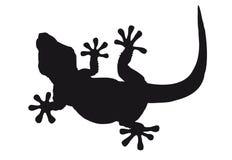 Silueta del lagarto Fotografía de archivo libre de regalías