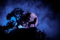 Silueta del lobo del grito contra fondo de niebla entonado oscuro y Luna Llena o lobo en silueta que gritan a la Luna Llena hola imagen de archivo