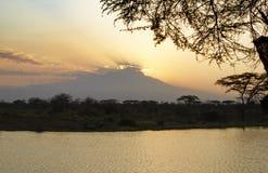 Silueta del monte Kilimanjaro en la puesta del sol Fotografía de archivo libre de regalías