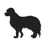 Silueta del negro del vector del perro de aguas Stock de ilustración
