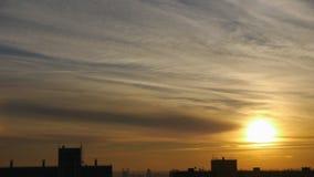 Silueta del pájaro que vuela sobre siluetas de la ciudad y de los edificios contra el cielo de oro brillante en el amanecer metrajes