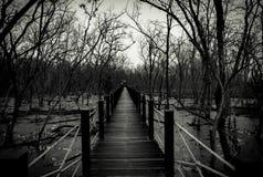 Silueta del puente de madera con la cerca blanca de la cuerda en el bosque Branc Imagenes de archivo