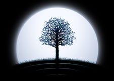 Silueta del árbol de la luna Imagen de archivo