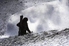 Silueta del refection de un esquiador Imagen de archivo libre de regalías
