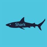 Silueta del tiburón Foto de archivo libre de regalías