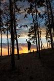 Silueta del turista y de un paisaje hermoso Fotografía de archivo