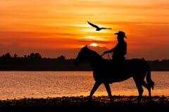 silueta del vaquero que se sienta en su caballo Imagen de archivo libre de regalías