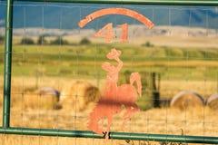 Silueta del vaquero y del caballo Foto de archivo