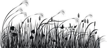 Silueta del vector de la hierba Fotografía de archivo