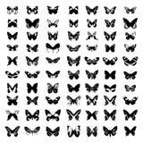 Silueta del vector de la mariposa. Fotografía de archivo libre de regalías