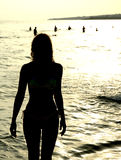 Silueta del verano Foto de archivo libre de regalías