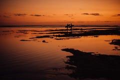 Silueta dos de personas que practica surf Arena y playa con la luz rojo oscuro de la puesta del sol foto de archivo libre de regalías