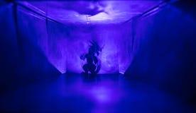 Silueta espeluznante en el edificio abandonado oscuridad Horror sobre concepto maniaco o pasillo oscuro con las puertas de gabine foto de archivo
